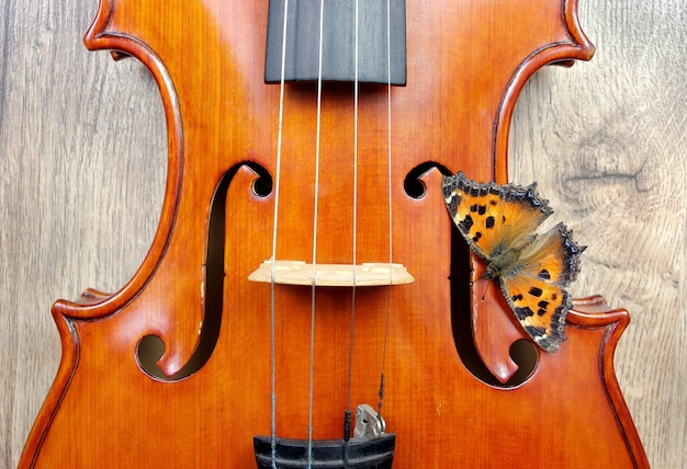 Violon et papillon sur une table en bois