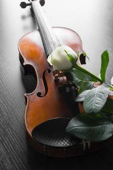 Violon et rose sur fond noir,