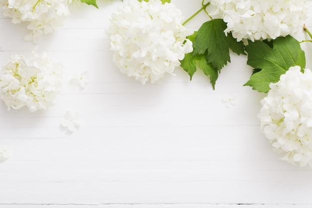 Viorne décorative sur fond de bois