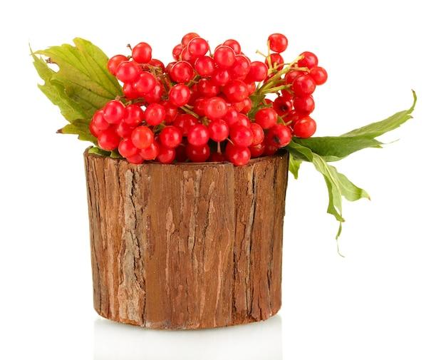 Viorne mûre dans un bol en bois isolé sur blanc