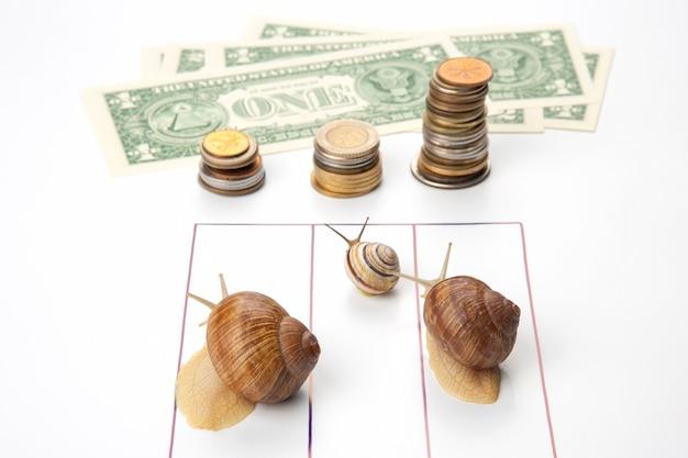 Vitesse pour atteindre le bien-être financier. les escargots courent jusqu'à la ligne d'arrivée avec de l'argent. percée et persévérance dans l'entreprise. métaphore de la concurrence des relations commerciales.