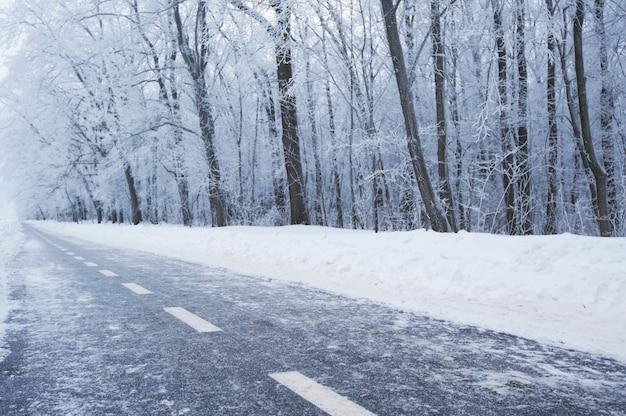 Voie cyclable d'hiver