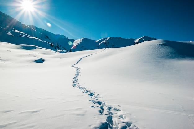 Voie humaine dans une neige fraîche missing on ice desert