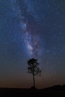 Voie lactée avec des étoiles et de la poussière spatiale dans l'univers.