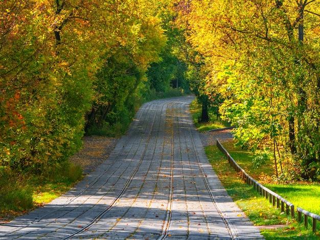 Des voies de tramway vides qui s'étendent au loin en automne.