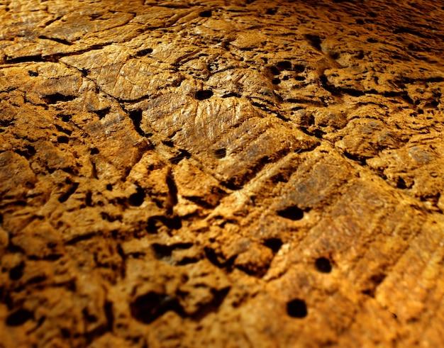 Voir l'agrandissement de la texture du bois avec toutes les nuances de grain de bois et de vers de bois