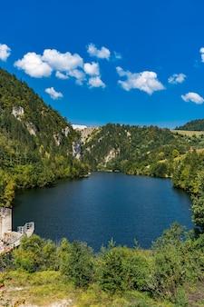 Voir Au Barrage Sur Le Lac Zaovine En Serbie Photo Premium