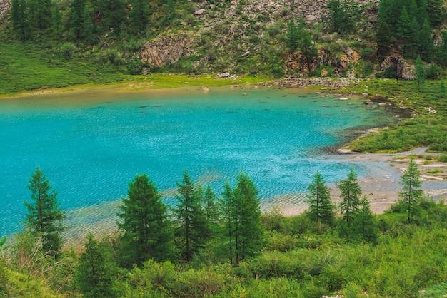 Voir ci-dessus sur l'étonnant lac de montagne azur vif dans la vallée. conifères au soleil. végétation riche des hauts plateaux. eau calme bleue propre. magnifique journée ensoleillée. paysage pittoresque d'une nature majestueuse