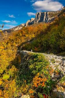 Voir à la route dans les gorges du danube à djerdap sur la frontière serbo-roumaine