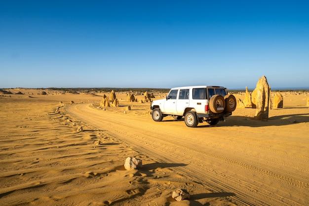 Voiture à quatre roues motrices sur pinnacles drive, chemin de terre dans le désert de pinnacles, parc national de nambung, australie occidentale., australie.