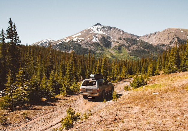 Voiture roulant sur un chemin au milieu des arbres avec montagne et ciel clair
