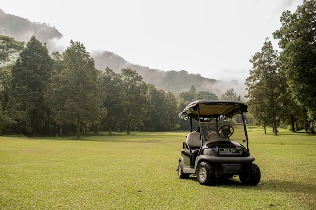 Voiturette de golf garée. bali. indonésie