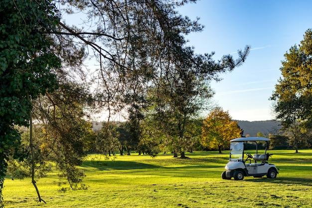 Voiturettes de golf sur un terrain de golf