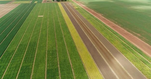Vol aérien au-dessus des champs avec des bottes de paille au moment de la récolte tournesols de soja et maïs ou maïs