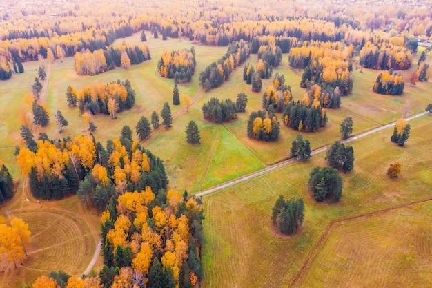 Vol de vue aérienne au-dessus du parc de la vallée d'automne avec des prairies, des arbres lumineux.