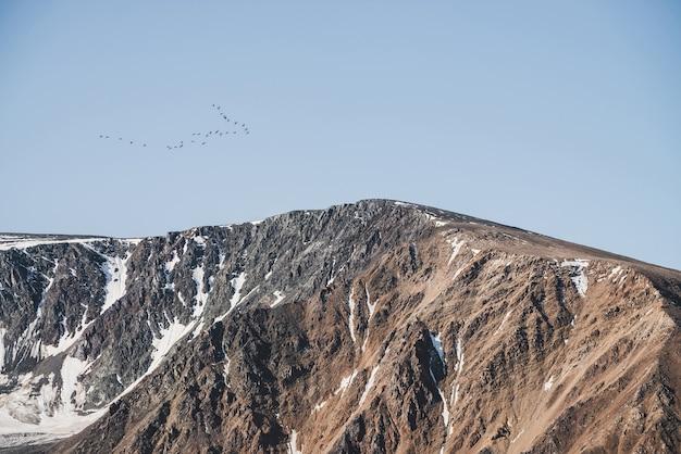 Volée d'oiseaux dans le ciel bleu survolent la crête de la montagne enneigée.