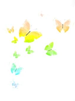 Voler des papillons tropicaux colorés sur fond blanc. modèle de conception