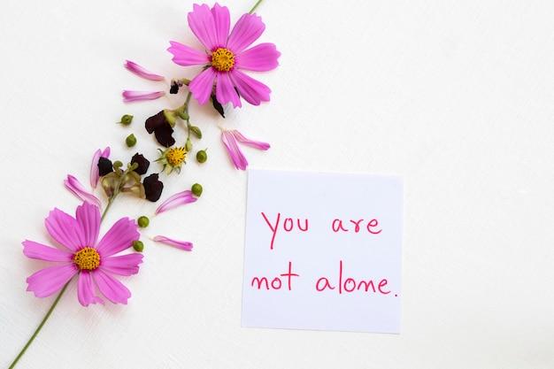 Vous n'êtes pas seul carte de message avec des fleurs de cosmos