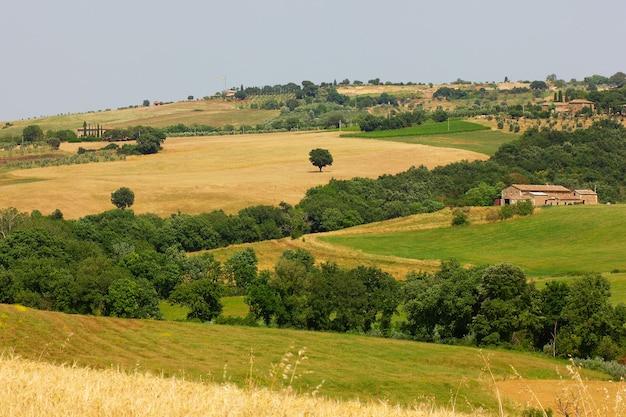 Voyage d'été dans les vignobles et les cyprès