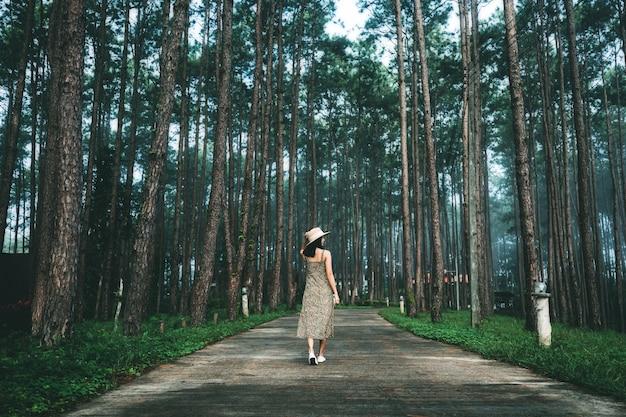 Voyage d'hiver se détendre concept de vacances, jeune voyageur heureux femme asiatique visites dans le jardin de pins à doi bo luang forest park, chiang mai, thaïlande