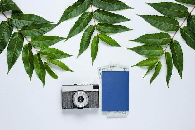 Voyage de nature morte minimaliste. feuilles de fougère, appareil photo rétro, passeport avec billets d'un dollar sur fond blanc. vue de dessus