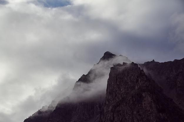 Voyage à pied dans les vallées de montagne. la beauté de la faune. altai
