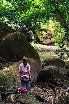 Voyage routard dans la forêt tropicale