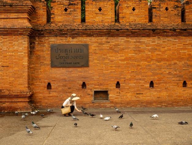 Voyage touristique autour de la porte thapae, porte thapae à la vieille ville de chiang mai.
