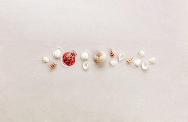 Voyage de vacances ou concept de plage de sable avec des coquillages sur fond de sable