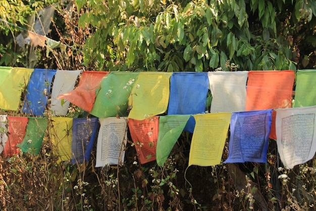 Voyager au népal