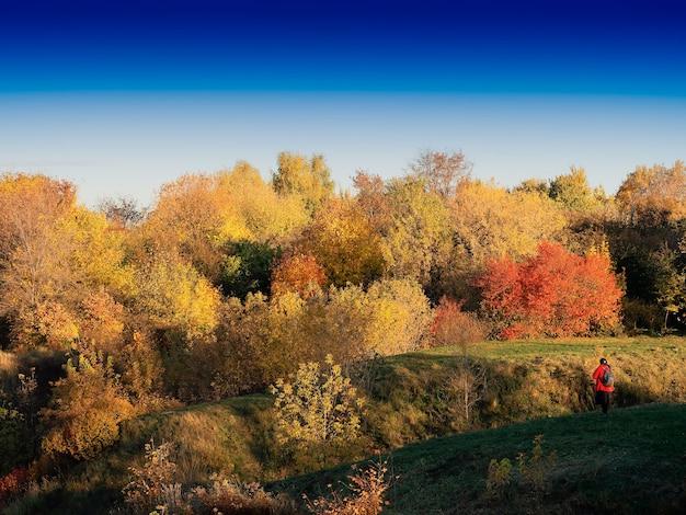 Voyageur en arrière-plan de paysage de parc d'automne