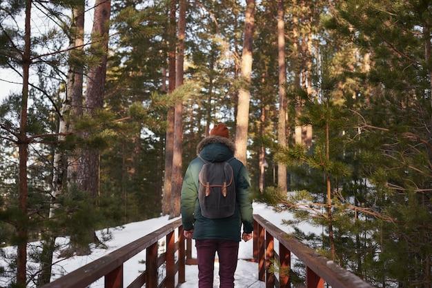 Voyageur dans la forêt