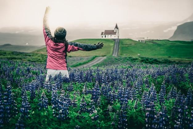 Voyageur en islande. église et fleurs de lupin.