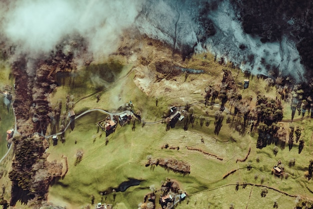 Vue aérienne d'arbres et de maisons