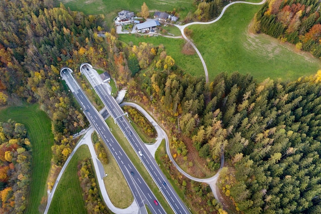 Vue aérienne d'aube supérieure de la route de vitesse de l'autoroute sortant du tunnel non enterré entre les arbres de la forêt d'automne jaune en zone rurale.
