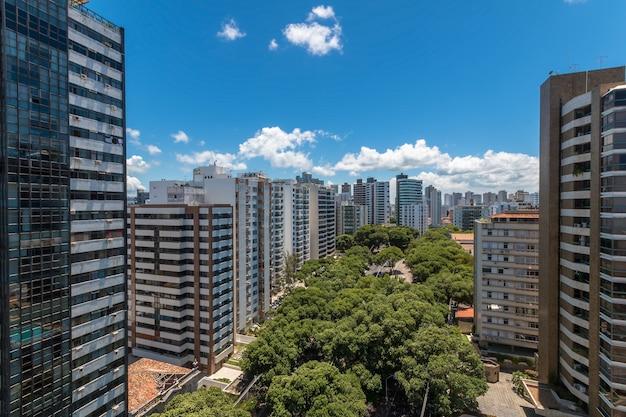 Vue aérienne de l'avenue bordée d'arbres et des bâtiments de la ville de salvador bahia au brésil.