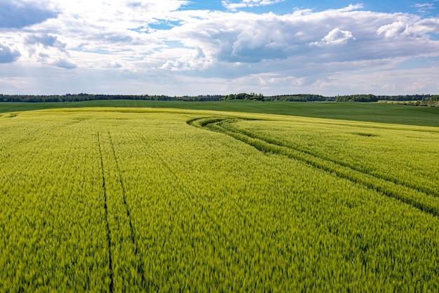 Vue aérienne de la campagne avec des champs agricoles verts et des forêts, lettonie