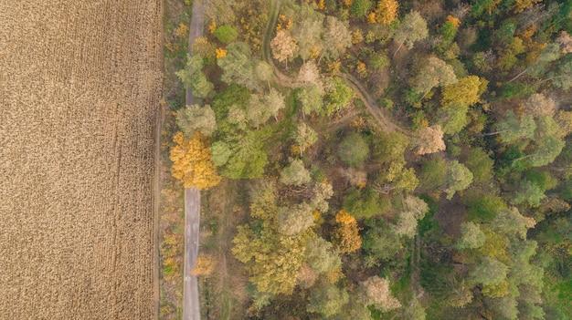 Vue aérienne de champ et forêt d'automne