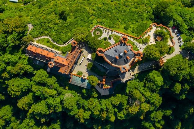 Vue aérienne sur le château de hohenschwangau schwangau, bavière, allemagne. image de drone de paysage avec des arbres.