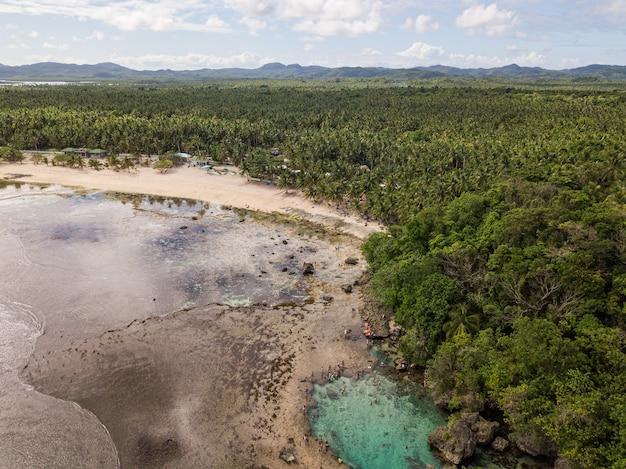 Vue aérienne d'une côte de l'océan avec plage de sable et verdure au premier plan