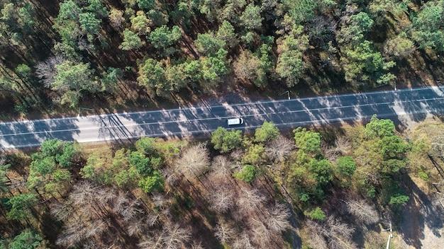Vue aérienne de dessus d'une route dans la forêt, transport.