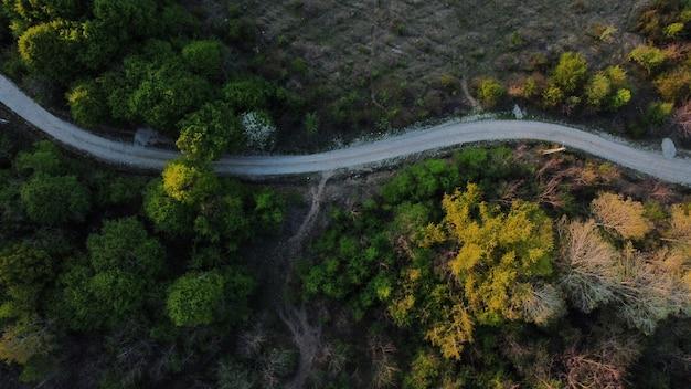 Vue aérienne de dessus d'une route serpentant à travers une zone densément boisée