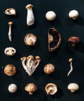 Vue aérienne de diverses collections de champignons sur fond noir