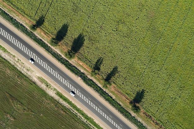 Vue aérienne de drone d'une autoroute passant à travers les champs verts