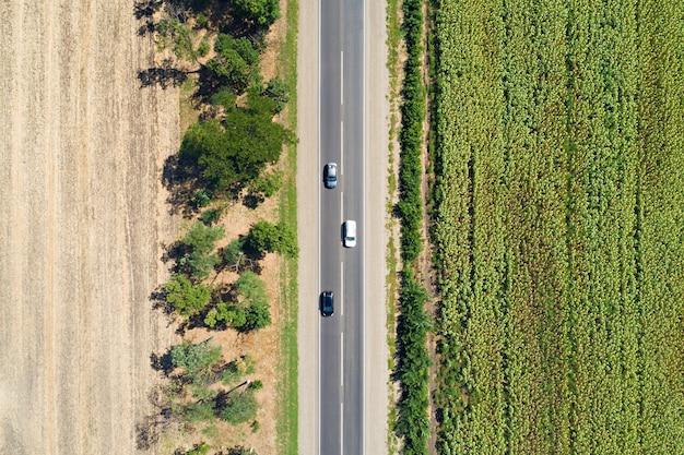 Vue aérienne de drone de champ de tournesol dépouillé et champ vide séché divisé avec des arbres et une autoroute