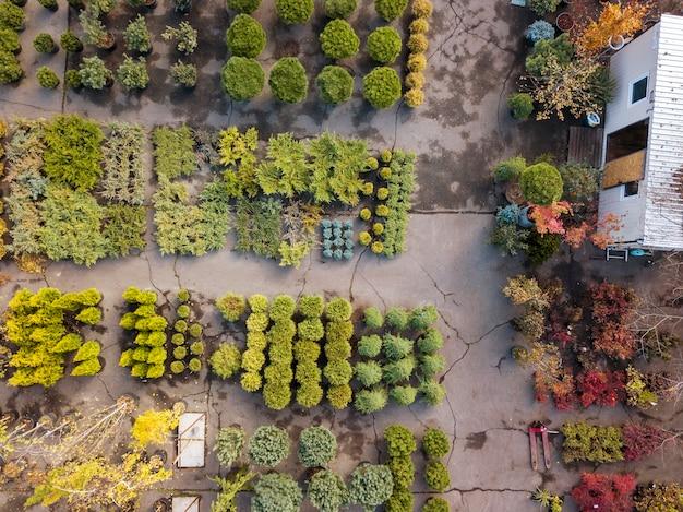 Vue aérienne du drone au-dessus du centre de jardinage avec motif végétal d'arbres et d'arbustes.