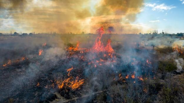 Vue aérienne du feu de forêt