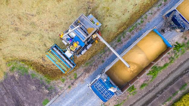 Vue aérienne du haut de la machine harvester et camion travaillant dans la rizière, vue d'en haut