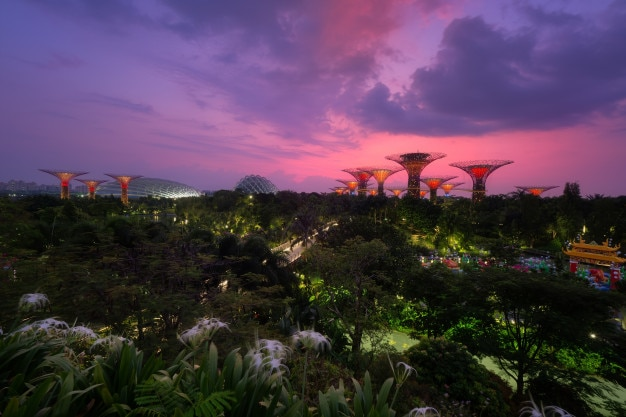 Vue aérienne du jardin de la baie en matinée. singapour