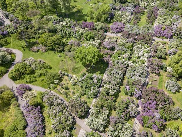 Vue aérienne du magnifique jardin botanique fleuri et des routes en été